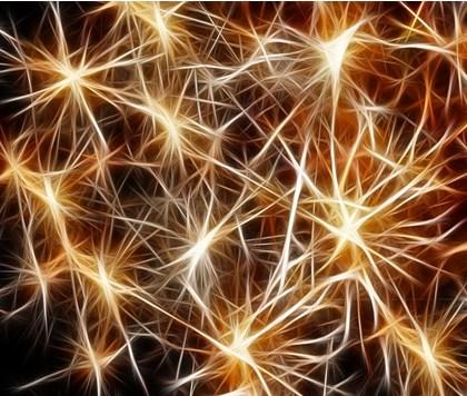 Neuromarketing y los factores clave para influir en el consumidor