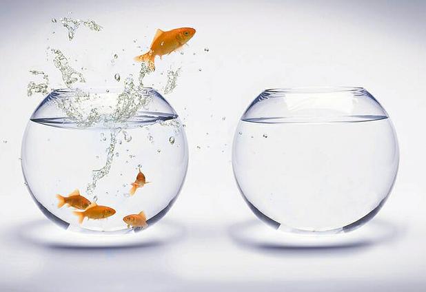 ¿Cómo potenciar la innovación en la organización?
